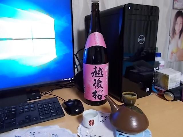 越後桜を熱燗で飲んでみる