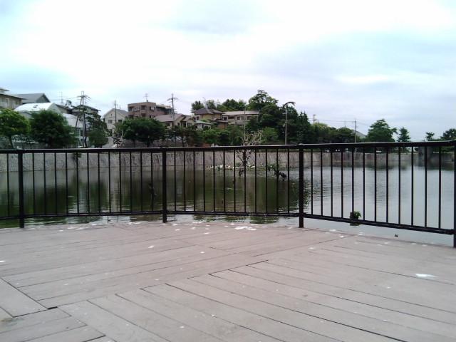 兵庫県新池(涼宮ハルヒの憂鬱-みくる池ポチャ)