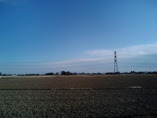 杉戸付近の田んぼ