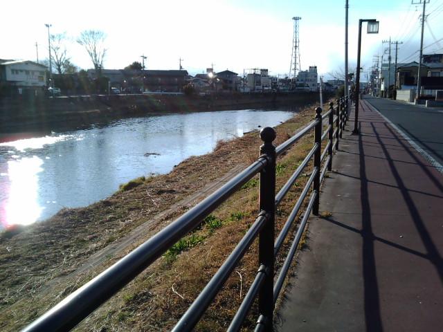 東武動物公園駅付近の川っぺり