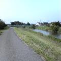 遠くに橋が見える川べりの道