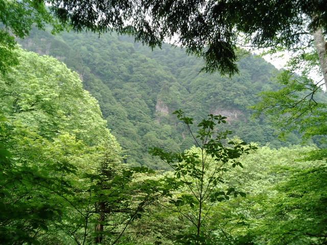 両神山14