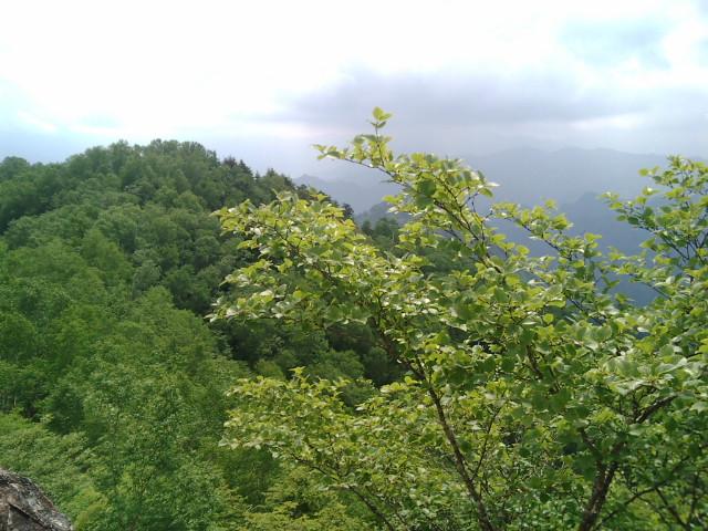 両神山17