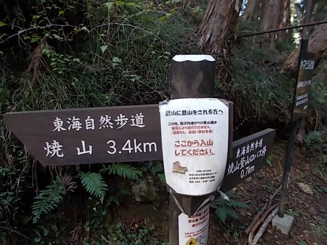 丹沢山24