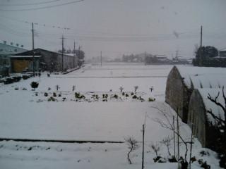 自宅雪景色