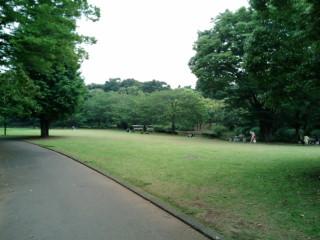 北の丸公園写真1