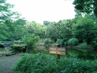 北の丸公園写真2