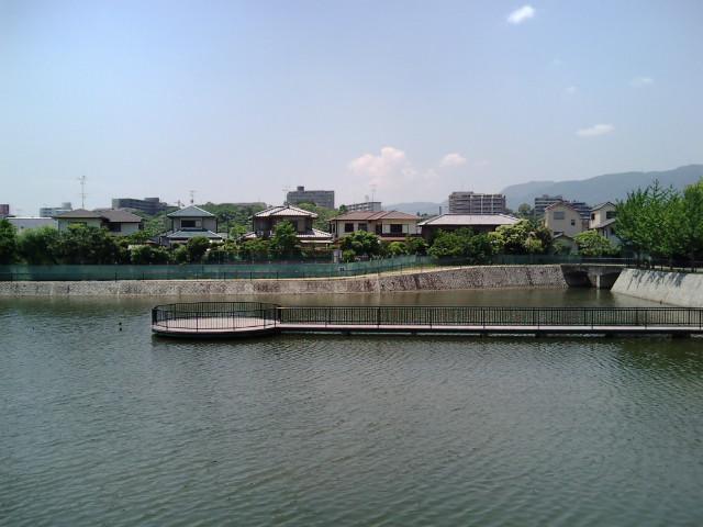 新池横から