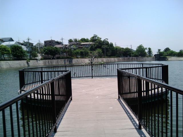 新池桟橋から