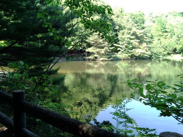 みくるま池