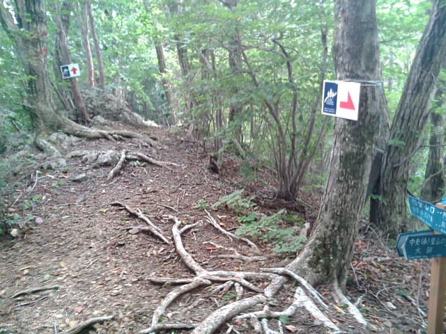 西登山口からの道