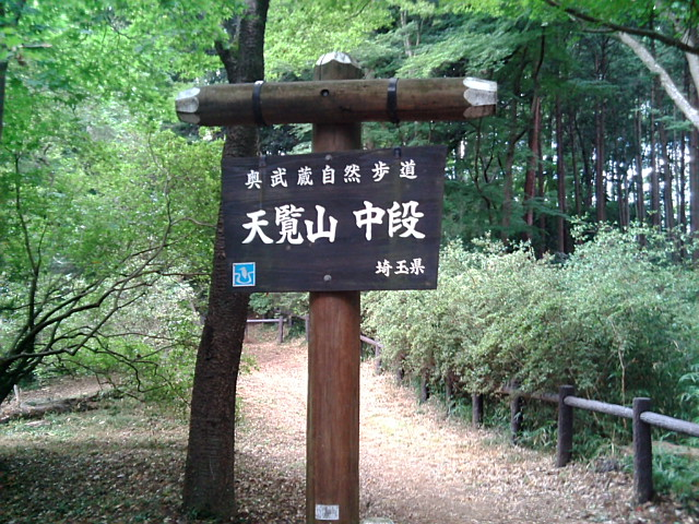 天覧山中段